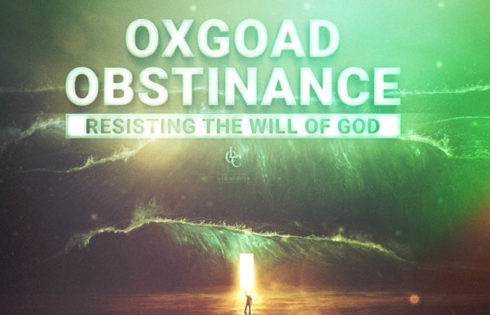 Oxgoad Obstinance - 11/3/19